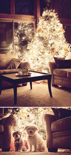 Christmas joy :)
