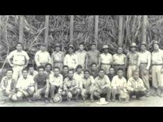 Filipino American Farm Workers in Hawaii(early 1900s)