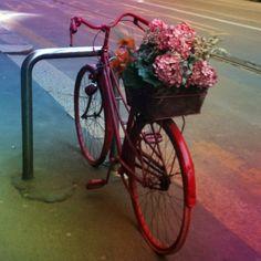 Bicicleta vermelha com cesta. D+