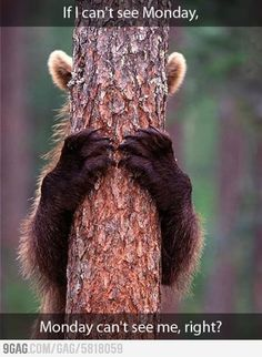 If I can't see Monday, Monday can't see me, right?