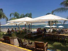 """The Gulf Shore"" Restaurant sporting Uhlmann Umbrellas. Gulf Shores Restaurants, Commercial Umbrellas, Patio, Outdoor Decor, Home Decor, Homemade Home Decor, Yard, Terrace, Decoration Home"
