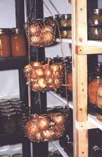 Successful Cold Storage tips for fruits and veggies Canned Food Storage, Produce Storage, Root Cellar, Fruits And Veggies, Store Vegetables, Fresh Vegetables, Home Canning, Living Off The Land, Preserving Food