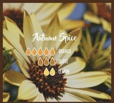 Autumn Spice Fall Diffuser Blends: Orange, Clove, Lemon Here are no less than FIFTY-SIX fall essential oil diffuser blends for your enjoyment. Something sure smells good! With BONUS 16 page e-Book! Fall Essential Oils, Clove Essential Oil, Essential Oil Diffuser Blends, Essential Oil Uses, Young Living Essential Oils, Calla, Diffuser Recipes, Aromatherapy Oils, Aromatherapy Recipes