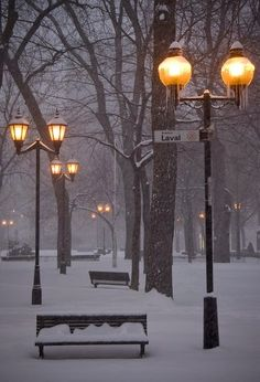 Snowy Night, Carré Saint-Louis aka park, Montreal, Canada