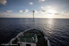 L'Esperanza se trouve à présent à l'est des Seychelles. C'est une nouvelle journée de recherche qui commence. A 5h30, perché sur Monkey Island – le point le plus haut de l'Esperanza – le second est planqué derrière ses jumelles.
