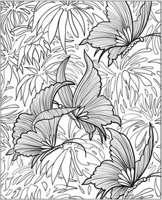Butterfly Papillon Mariposas Vlinders Wings Gracefull Amazing Coloring pages colouring adult detailed advanced printable Kleuren voor volwassenen coloriage pour adulte anti-stress kleurplaat voor volwassenen Line Art Black and White http://www.doverpublications.com/zb/samples/802175/sample8a.html