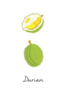 Buah apa kah ini?  Durian is durian.