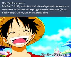 Fun facts about one piece - FunFactAbout