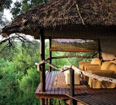 Londolozi Game (Reserve south africa )