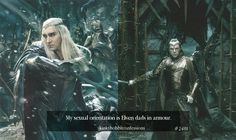 """"""" #2488 My sexual orientation is Elven dads in armour. """""""