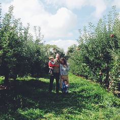 Apple picking with my family this morning.