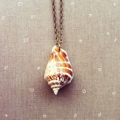 Seashell Necklace Nautical Jewelry Real by lowelowejewelry on Etsy, $20.00