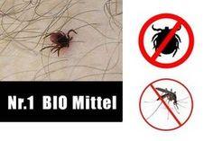 Ich habe es getestet und fand das beste Mittel gegen Zecken, Mücken und Pferdefliegen. Ganz natürlich und vor allem Gesund - So wird es gemacht