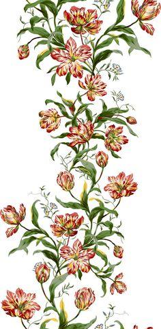Bunch Of Flowers Drawing, Draw Flowers, Flower Art Images, Wedding Plants, Paisley Art, Birth Flowers, Plant Art, Botanical Flowers, Peony Flower