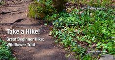 Take a Hike in Huntsville! Wonderful Wildflower Trail