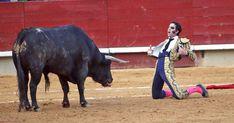 Actuaciones de Juan José Padilla en La Magdalena y en Las Fallas, con reconocimientos para Ginés Marín y Santi Ortiz. El concurso de El Puerto, desierto