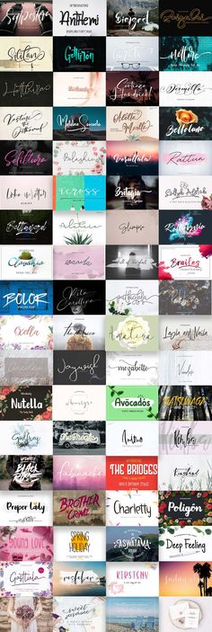 The Modern Fonts Bundle: 89 Unique Fonts with Commercial Use Modern Script Font, Modern Fonts, Typographic Design, Typography, Lettering, Wedding Postcard, Signature Fonts, Branding Materials, Brush Font