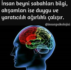 Sonra neden dersler 7de Personal Development, Perception, Physiology, Knowledge, Cool Words, Affirmations, Science, Mindfulness, Education