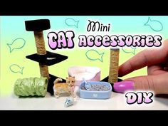 Miniature Cat Accessories Tutorial // DIY Dolls/Dollhouse - YouTube