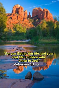 """Colossians 3:1-3 NLT """"Since you have been raised to new life with Christ, set your sights on the realities of heaven, where Christ sits in the place of honor at God's right hand. Think about the things of heaven, not the things of earth. For you died to this life, and your real life is hidden with Christ in God."""""""