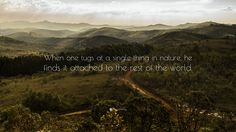 Image from http://quotefancy.com/media/wallpaper/3840x2160/8708-John-Muir-Quote-When-one-tugs-at-a-single-thing-in-nature-he-finds.jpg.