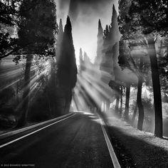 mystic light
