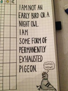 Early bird quote