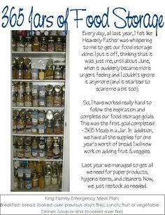 Latter-Day Chatter: Project Noah-Food Storage and Emergency Preparedness!!! Great!!