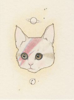 Bowie cat by Lilly Piri. Constellations, Music Illustration, Cats Musical, Space Cat, White Cats, Funny Art, Crazy Cats, Cat Art, Drawings