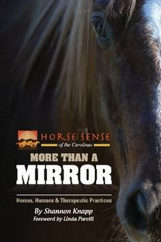More Than a Mirror: Horses, Humans & Therapeutic Practices by Shannon C. Knapp, http://www.amazon.co.uk/dp/0979404185/ref=cm_sw_r_pi_dp_qQWlsb0F8HX7X