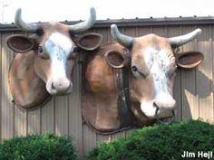 Des Moines, Iowa: Big City Cow and Calf