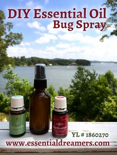 how to make peppermint oil bug spray