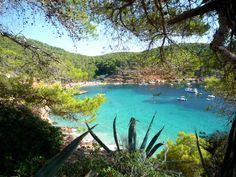 Ibiza, 2011
