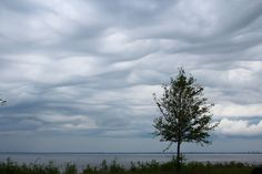 right before the rain!! Rainy day sky off Scenic Hwy in Southeast #Pensacola~