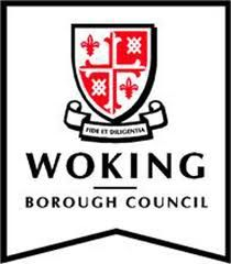 Woking enjoys vibrant and diverse communities and Woking Borough Council is committed to promoting equality of opportunity in the way it employs its staff, delivers services to, and consults with, the people of Woking. Waterloo Station, Greater London, Coat Of Arms, Surrey, Counseling, Nostalgia, Marketing, Equality, Mental Health