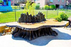 Can you believe this tree stump is actually a fire pit?