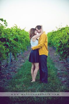 vineyard winery engagement pictures, kansas city photography