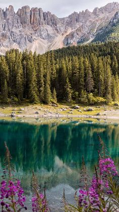 The Lake of Carezza, located in the Dolomites in South Tyrol, Italy, is a protected natural monument, famous for its deep green water and the mountain scenery rising above the surrounding forest. Iphone Wallpaper Travel, Iphone Wallpapers, Sky Sea, South Tyrol, Natural Phenomena, Phone Backgrounds, Wonderful Places, Zen, Scenery