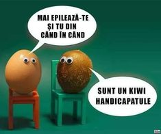 """Self-challenge: Work """"Soy un kiwi, imbecil!"""" into a conversation. Kiwi, Frases Humor, Amor Humor, Spanish Puns, Haha Funny, Hilarious, Funny Life, Funny Images, Funny Pictures"""