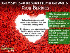 Goji Berry Benefits – Red Superfoods