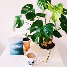 KKK, czyli kwiaty, kawa i książka. Przepis na najlepszy relaks!