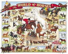The World of Horses - 1000 Piece Jigsaw Puzzle