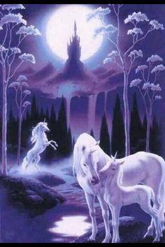 ... unicorns unicorn except fantasy art art unicorns pegasus uniz unicorns
