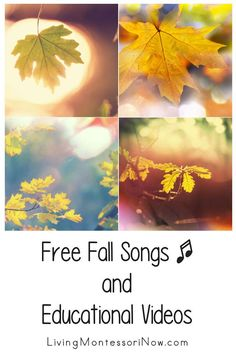 Free fall educational videos and a list of fall-themed free song and rhyme posts. Autumn resources for a variety of ages - Living Montessori Now Thanksgiving Art Projects, Halloween Art Projects, Autumn Activities For Kids, Fall Crafts For Kids, Nonfiction Books For Kids, Art For Kids Hub, Free Songs, Science Videos, Preschool Themes