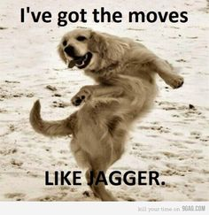 Like jagger....&#3212
