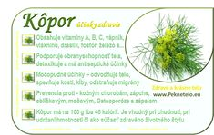 obrazok kopor Raw Food Recipes, Healthy Recipes, Wellness, Weight Loss Smoothies, Planer, Healthy Lifestyle, Medicine, Fitness, Food And Drink