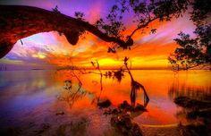 Key Largo Florida Mangroves Sunset