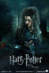 Bellatrix Lestrange - Harry Potter and the Deathly Hallows Part Harry Potter Girl, Harry Potter Poster, Harry Potter Characters, Villain Characters, Harry Potter Bellatrix Lestrange, Draco Malfoy, Belatrix Lestrange, Hp Movies, Helena Bonham Carter