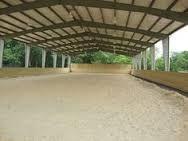 Picadero techado abierto. Caballos