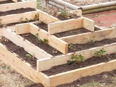 Strawberry/planting pyramid planters